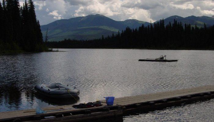 Dock and Swimming Platform
